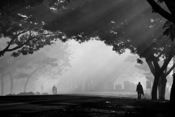 Фотограф из Бангладеша Камрул Хасан - №23