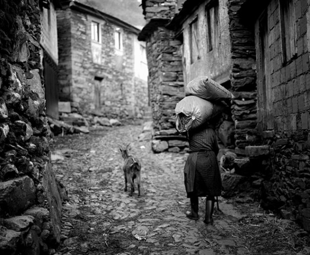 © Rui Pires