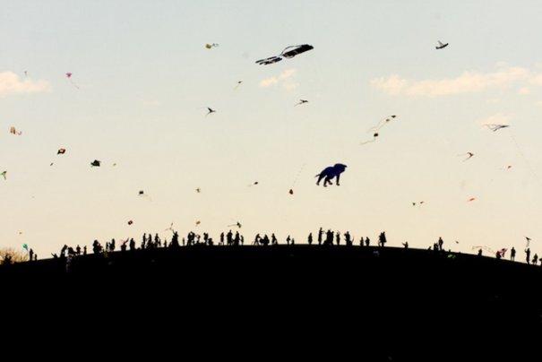"""Пол Октавиус: """"Тот же холм, другой день"""" - №7"""