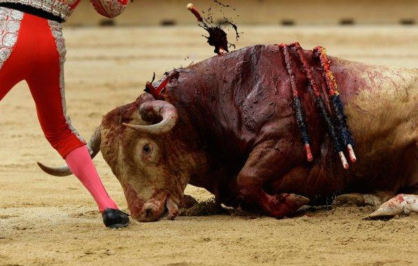 (Reuters/Joseba Etxaburu)