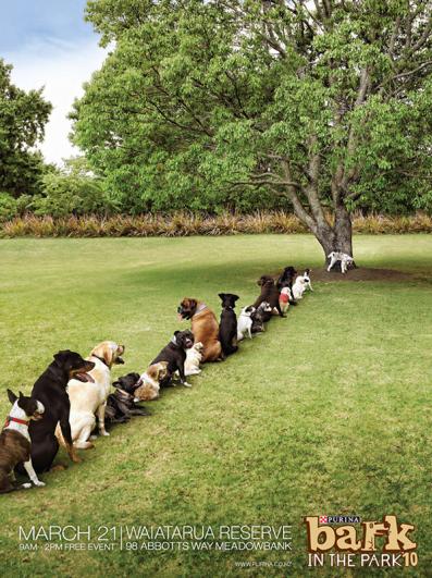 Purina Bark in the Park