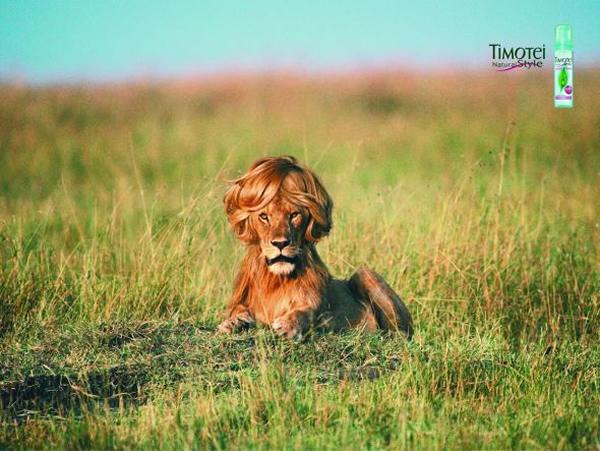 Мусс для волос Timotei
