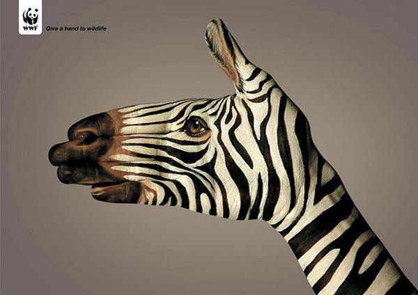 Подайте руку дикой природе