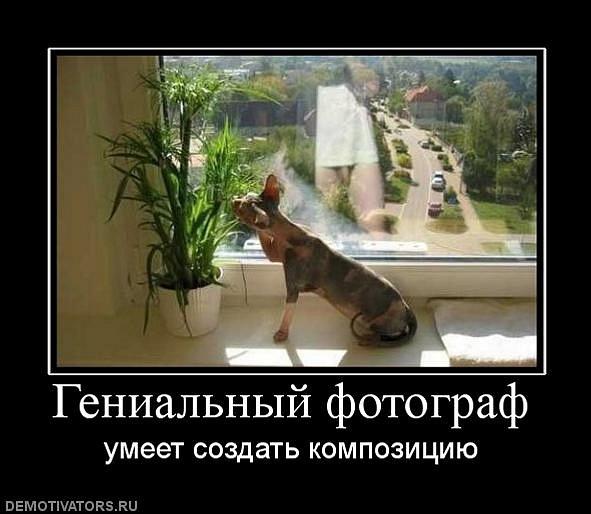 Фото юмор (демотиваторы) - №13