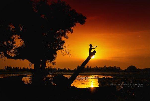 Талантливый индийский фотограф Сасикумар Рамачандран - №5