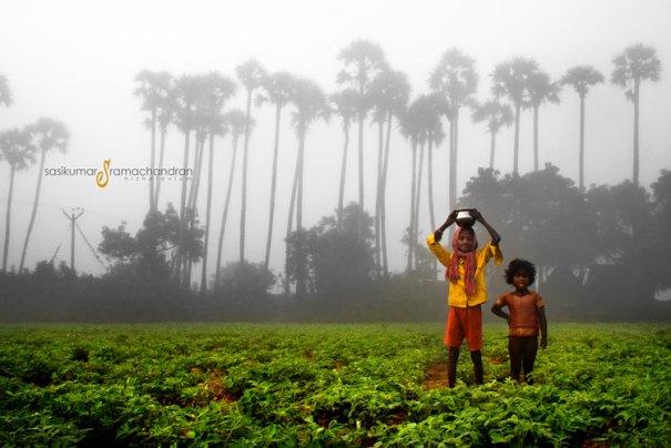 Талантливый индийский фотограф Сасикумар Рамачандран - №11