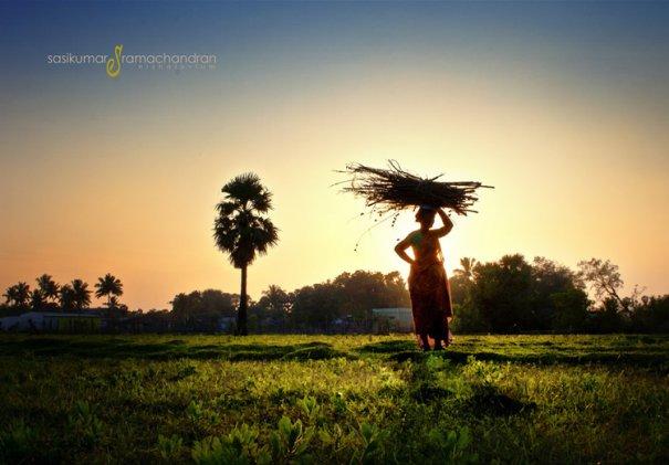 Талантливый индийский фотограф Сасикумар Рамачандран - №21