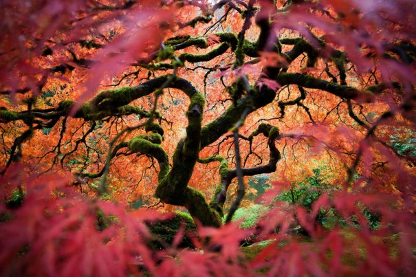 Fred An/National Geographic Traveler Photo Contest