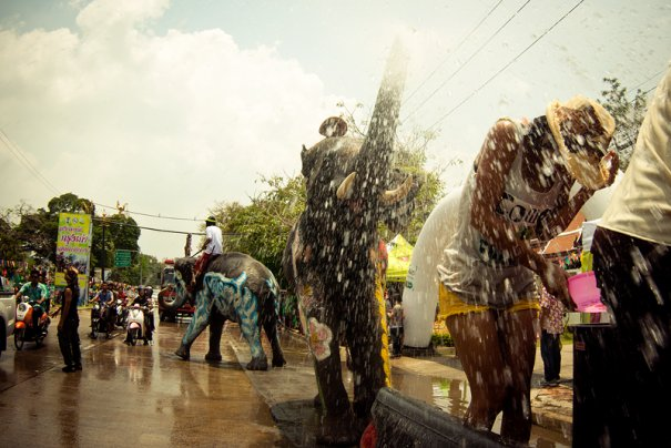 слоновий душ