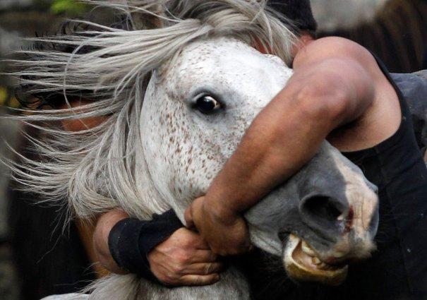 Reuters/Miguel Vidal
