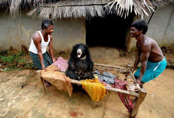 AP Photo/Biswaranjan Rout