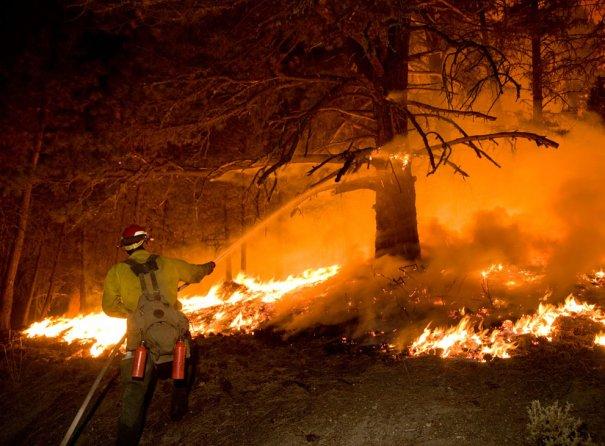 Reuters/Kari Greer/U.S. Forest Service