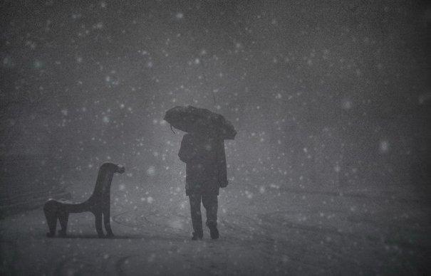 Жанровые фото. ( photographer Yaroslav Boychenko) - №1