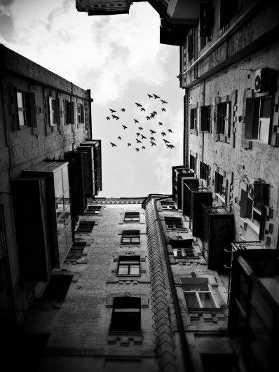 Жанровые фото. ( photographer Yaroslav Boychenko) - №5