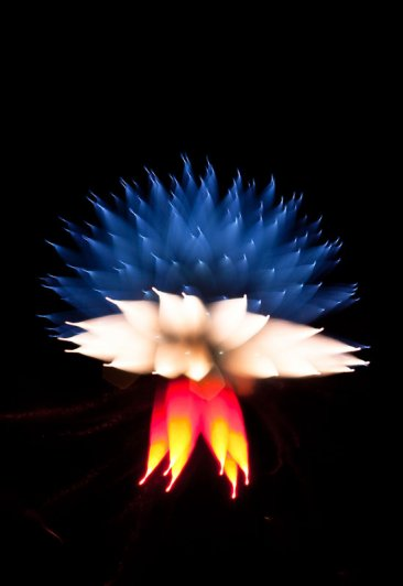 Long-Exposure-Fireworks-2