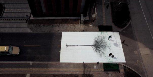 На пешеходных переходах в Китае появились необычные деревья - №2