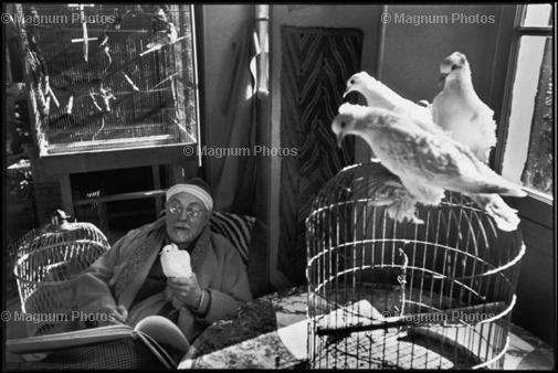 Франция. 1944. Французский художник Генри Матисс у себя дома. Henri Cartier-Bresson