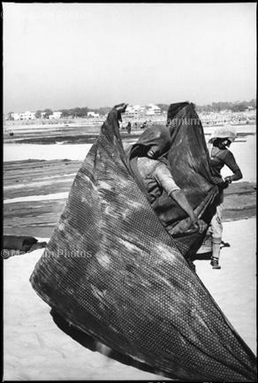 Индия. 1966