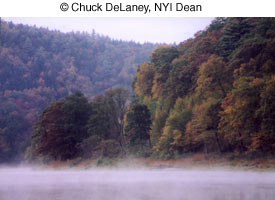 Как фотографировать осенью - №3