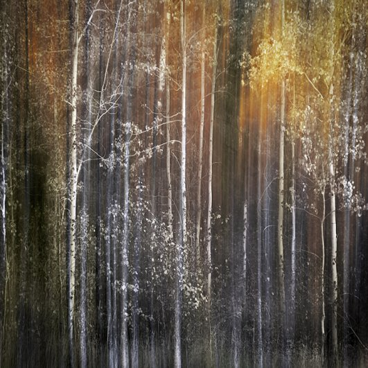 Абстрактные фотографии Урсулы Абреш/Ursula Abresch - №4