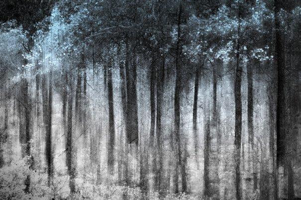 Абстрактные фотографии Урсулы Абреш/Ursula Abresch - №20