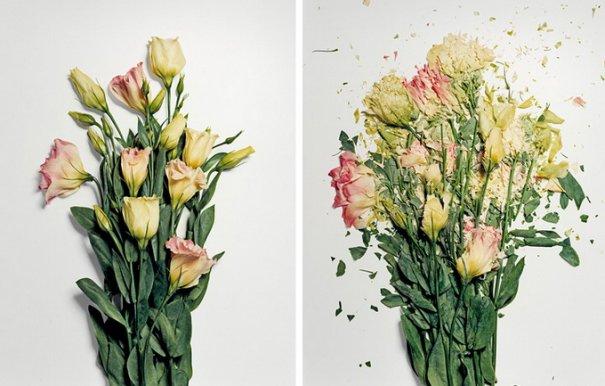 Сломанные цветы Джона Схиремана/Jon Shireman - №4