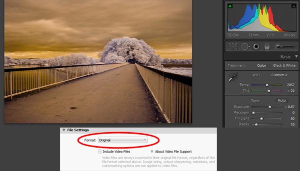 Как сделать инфракрасное фото - №7