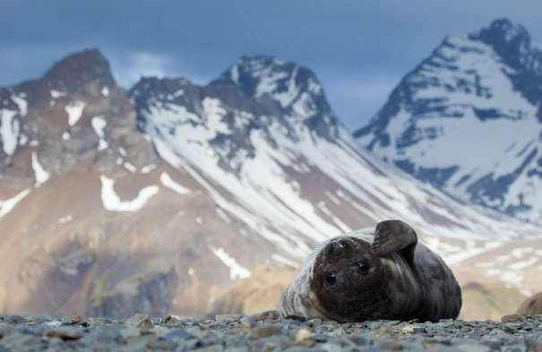 © Ondrej Zaruba/National Geographic Photo Contest
