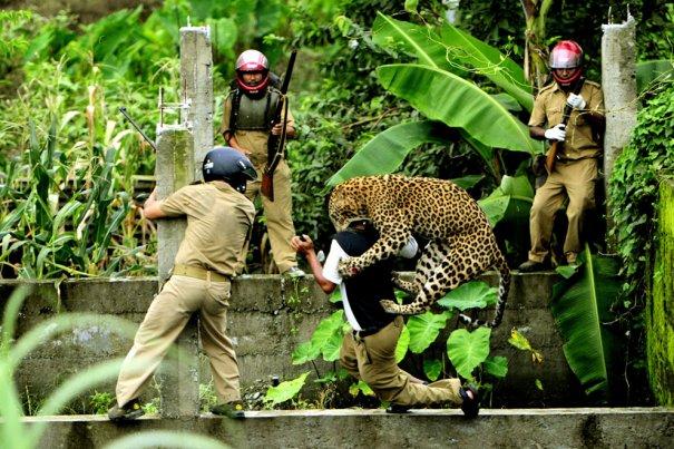 © Salil Bera/National Geographic Photo Contest