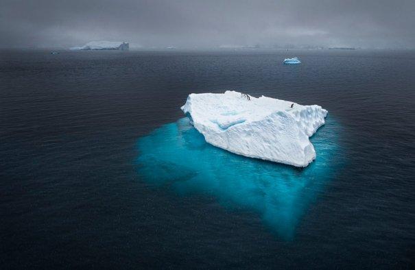© Joshua Holko/National Geographic Photo Contest
