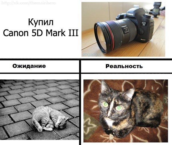 3UK_8liNDVc