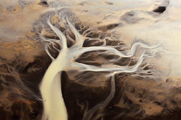 """1. Река Хвиутау с ее странной палитрой красок и необычными пейзажами. Похоже на дерево. (Sandro Santioli, Solent News & Photo Agency) - """"птичий полет"""""""