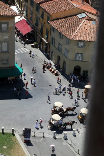 47 Вид с вершины башни