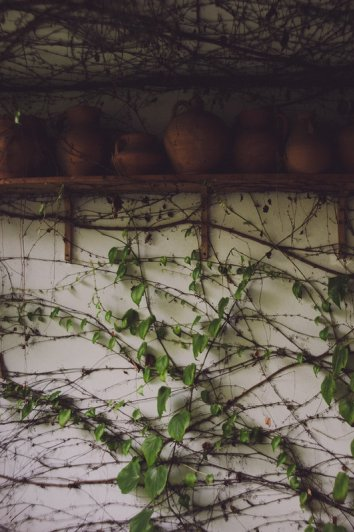 Фотограф Лаура Макабреску (Laura Makabresku) - №8