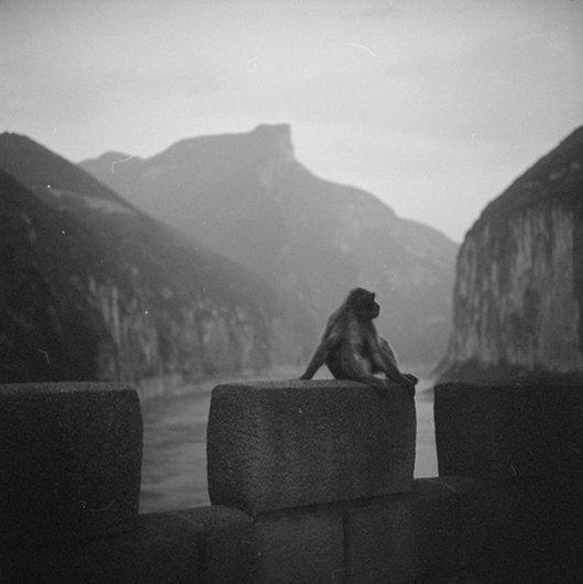 Мастер черно-белой фотографии Ян Минг/Yan Ming - №13
