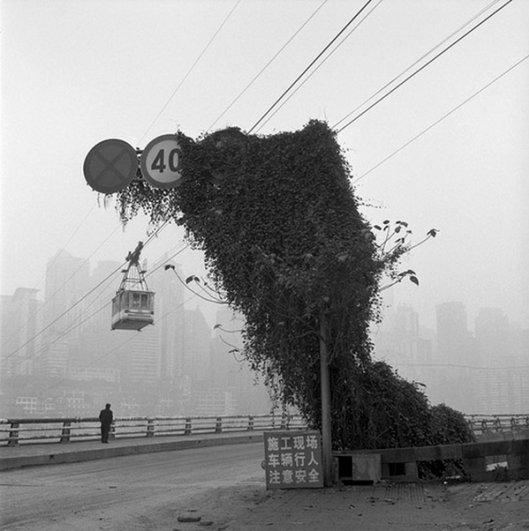 Мастер черно-белой фотографии Ян Минг/Yan Ming - №21