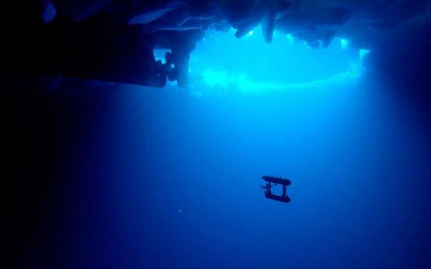 Reuters/Australian Antarctic Division