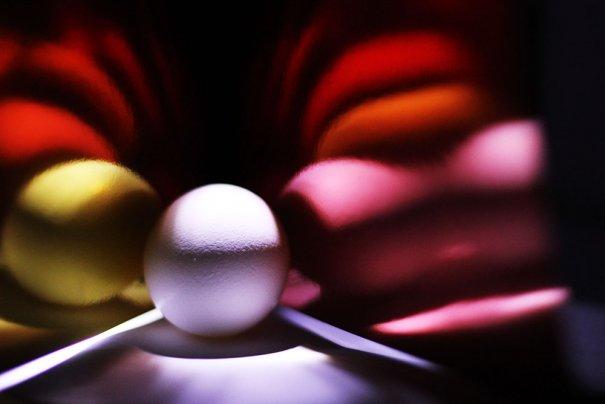 Яйца - №7