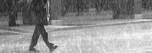 фото под дождем
