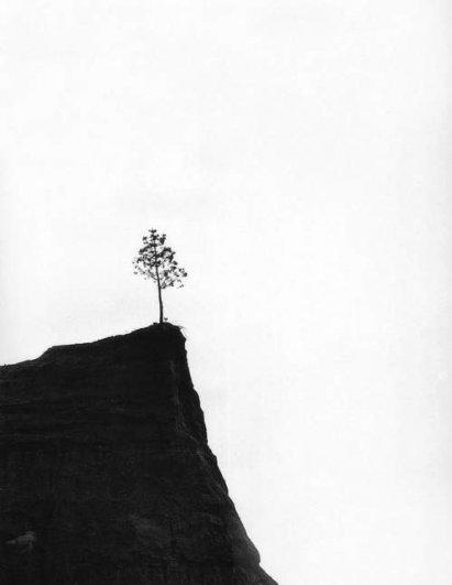 Правда Жизни от Эдуардо Гагейро  (Eduardo  Gageiro) - №27