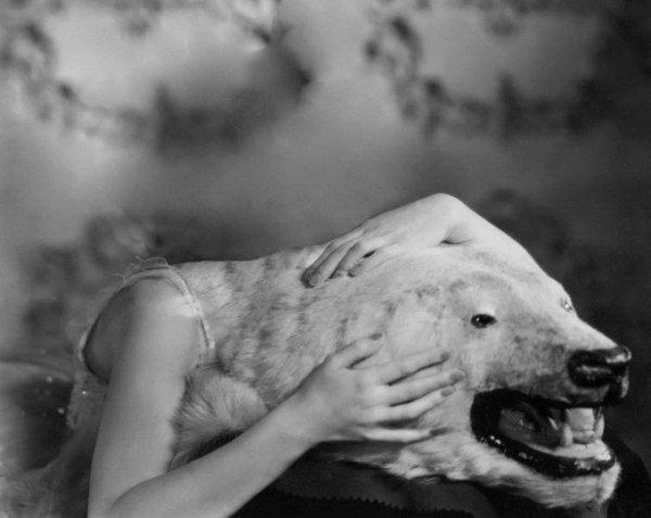 Прекрасные фото-манипуляции бельгийского художника Ноэ Сендаса (Noé Sendas) - №6