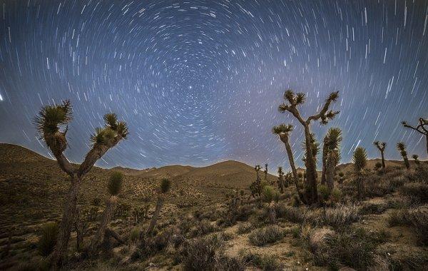 фото звёздного неба посмотреть 5