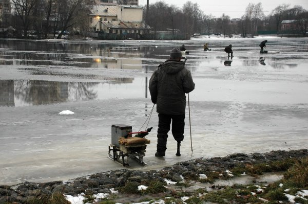 Николай Танаев - Очень хочется, но страшно (http://fotokto.ru/id121031)