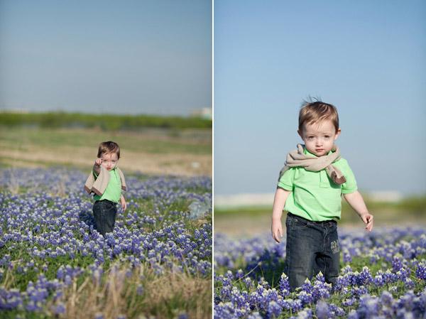 wildflower_portraits_1