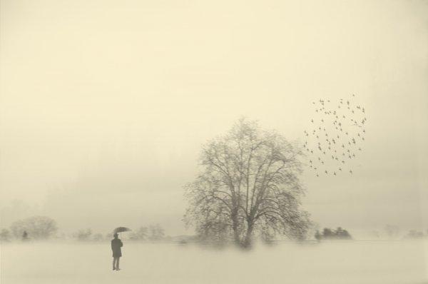 Фото одиночества 7