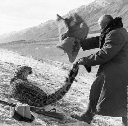 .. Охотник из Киргизии, 1966г.