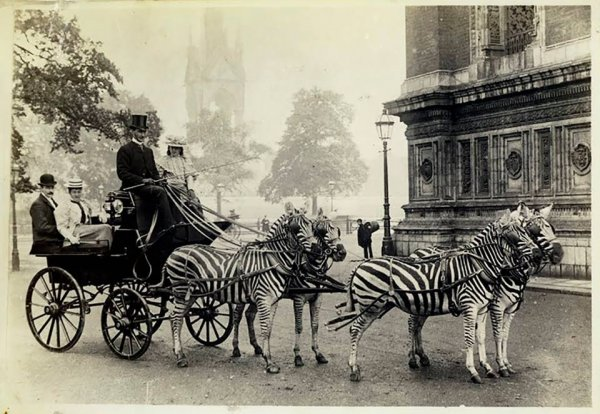 1894 год. Экзотичный лондонский экипаж.