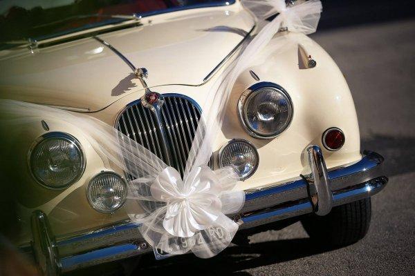 Тенденции свадебных фото 6