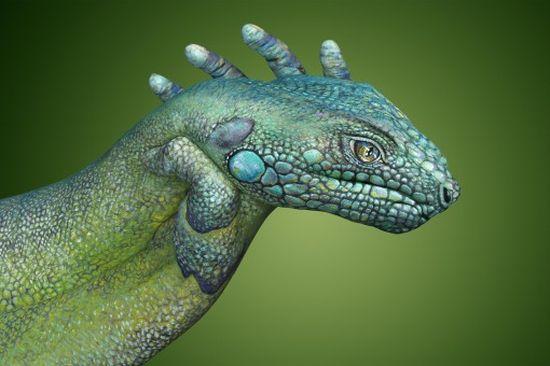 Фото животных из рук 2