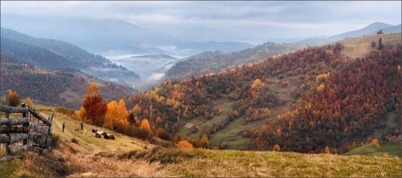 осенние фотографии – Автор Влад Соколовский
